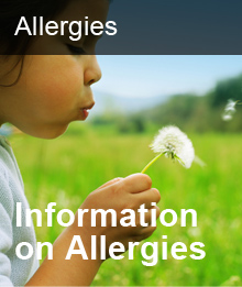Information on Allergies